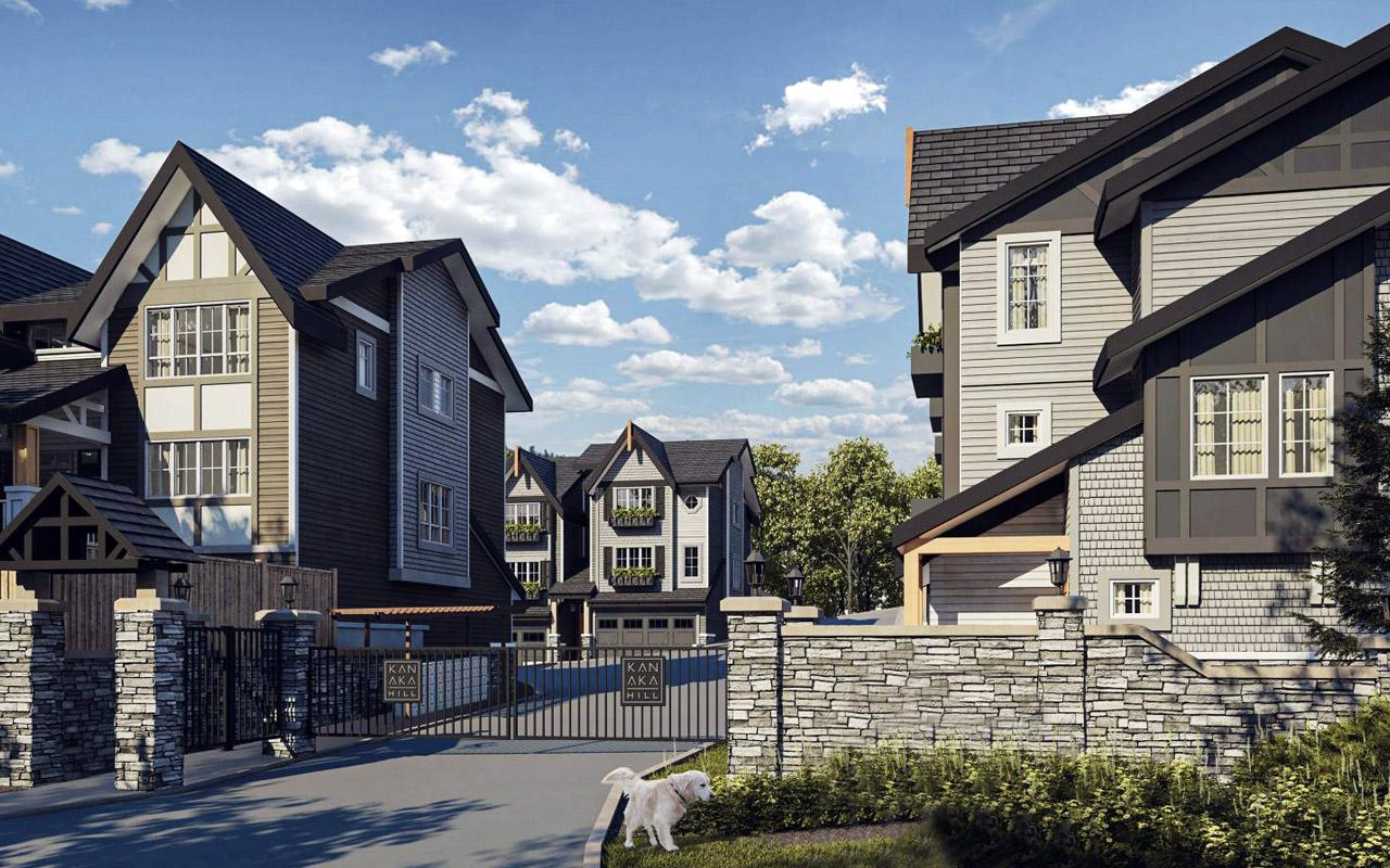 Ruxton Village Development-completed
